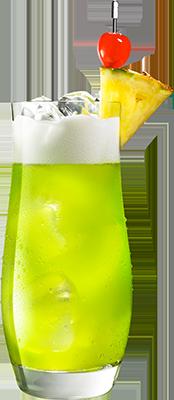 MIDORI<sup>®</sup><br>Splice